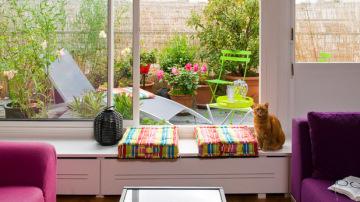 Privacidad entre plantas